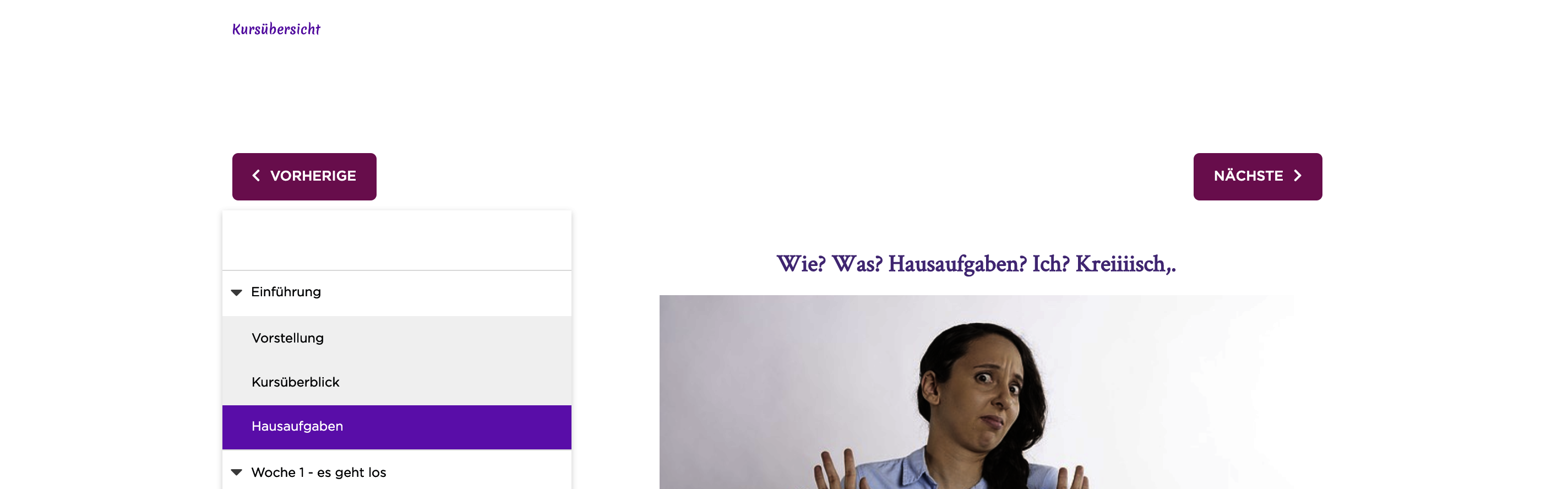 Online-Kurs_ohne_Banner.png
